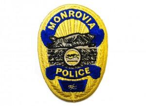 Broderie embleme Politie, Politia Locala, Politia de frontiera, Politia Animalelor